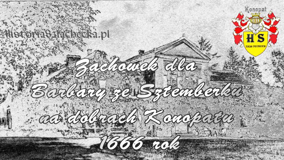 Zachowek dla Barbary ze Sztemberku na dobrach Konopatu 1666 rok